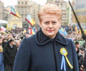 Политический подхалимаж: президенту Литвы дали понять, что за русофобию придется ответить