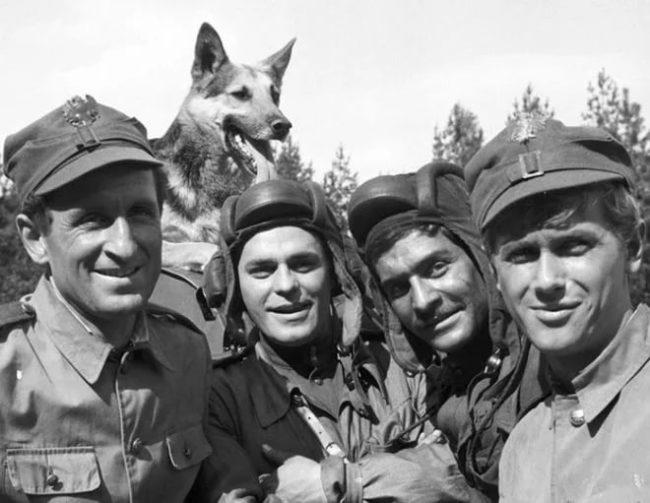 Сериал «Четыре танкиста и собака»: вот как сложились судьбы актеров?