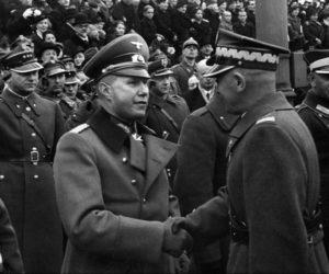 Как поляки фюреру служили