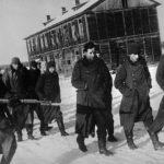 Немцы в советском плену: «Забудь, что ты немец». Вот как выживали «фрицы»