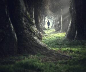 Реинкарнация - что это? Миф или реальность?
