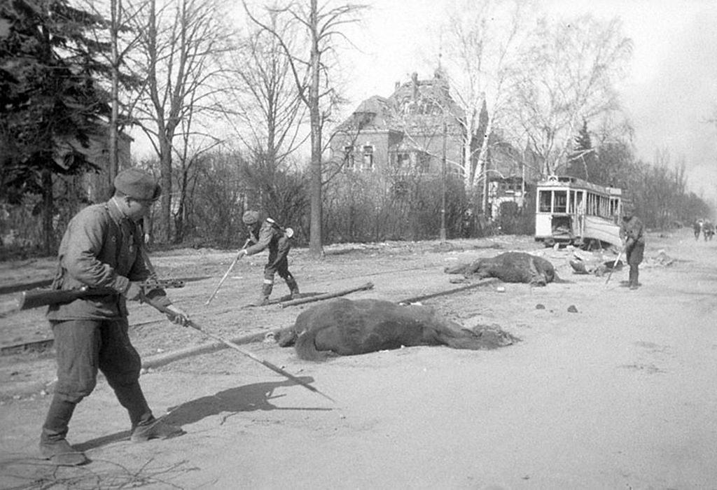 советская армия взяла Кенигсберг