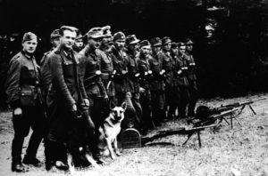 бандеровцы после войны