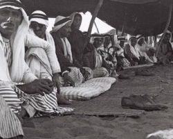 Что должен сделать мусульманин, если съел свинину по незнанию. Что еще нельзя есть по Корану
