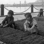 Как в блокадном Ленинграде выживали люди