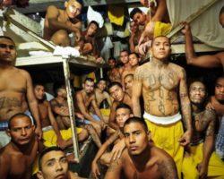 Тренировка в тюрьме
