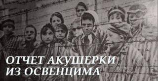 Рапорт польской акушерки из Освенцима