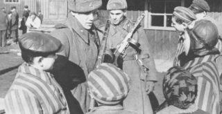 Освобождение концлагеря Освенцим